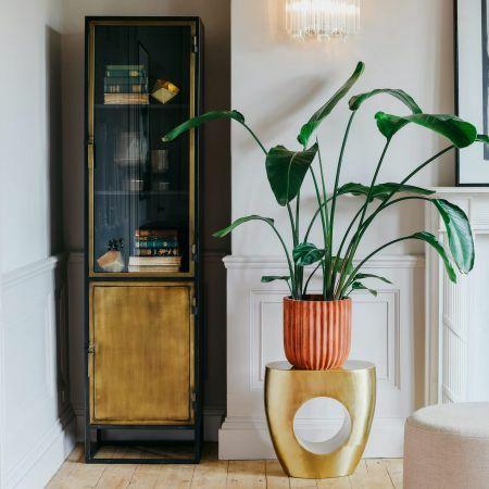 Dexter Single Glass Cabinet
