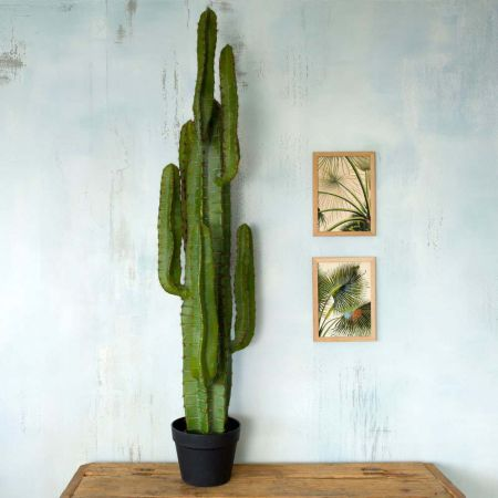 Faux Potted Desert Cactus