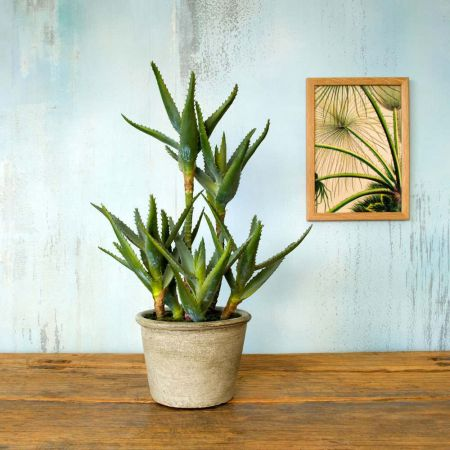 Faux Potted Aloe