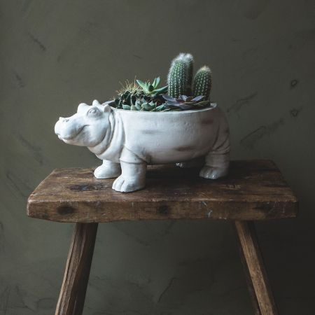 Harper Hippo Bowl