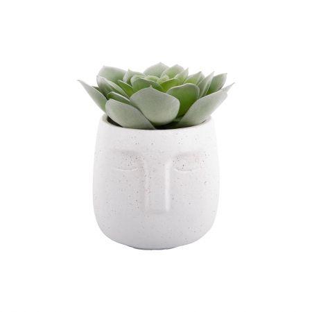 White Face Planter