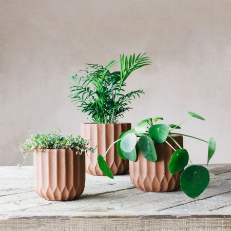 Brown Ribbed Planters