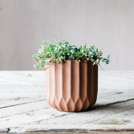 Small Brown Ribbed Cement Planter