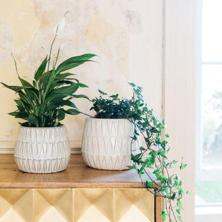 Triangle Glazed Planters