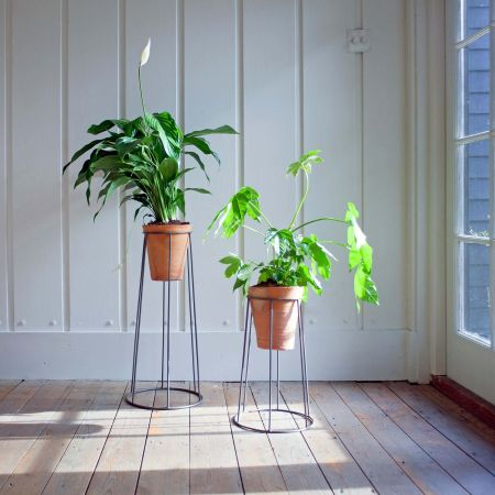 Evie Plant Stands