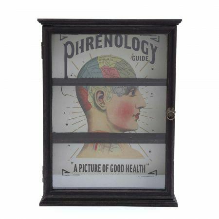 Phrenology Cabinet