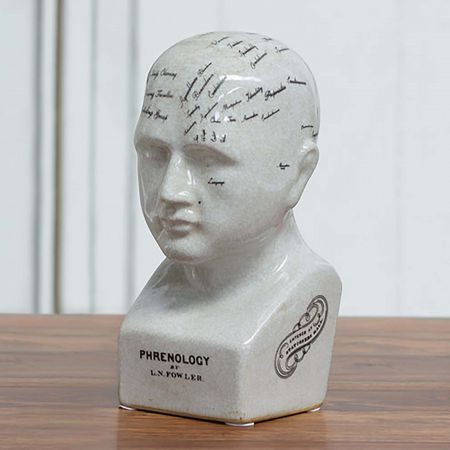 Small Ceramic Phrenology Head