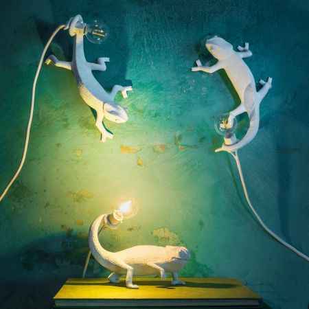 White Chameleon Lights