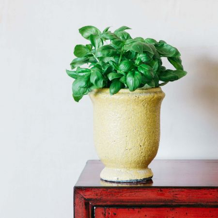 Ochre Tall Planter