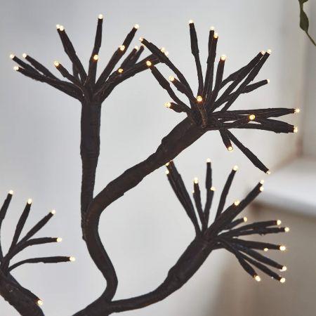 Starburst Branch Light