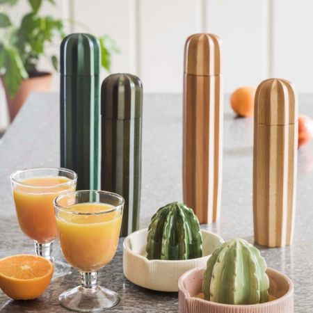 Wooden Cactus Salt and Pepper Mills