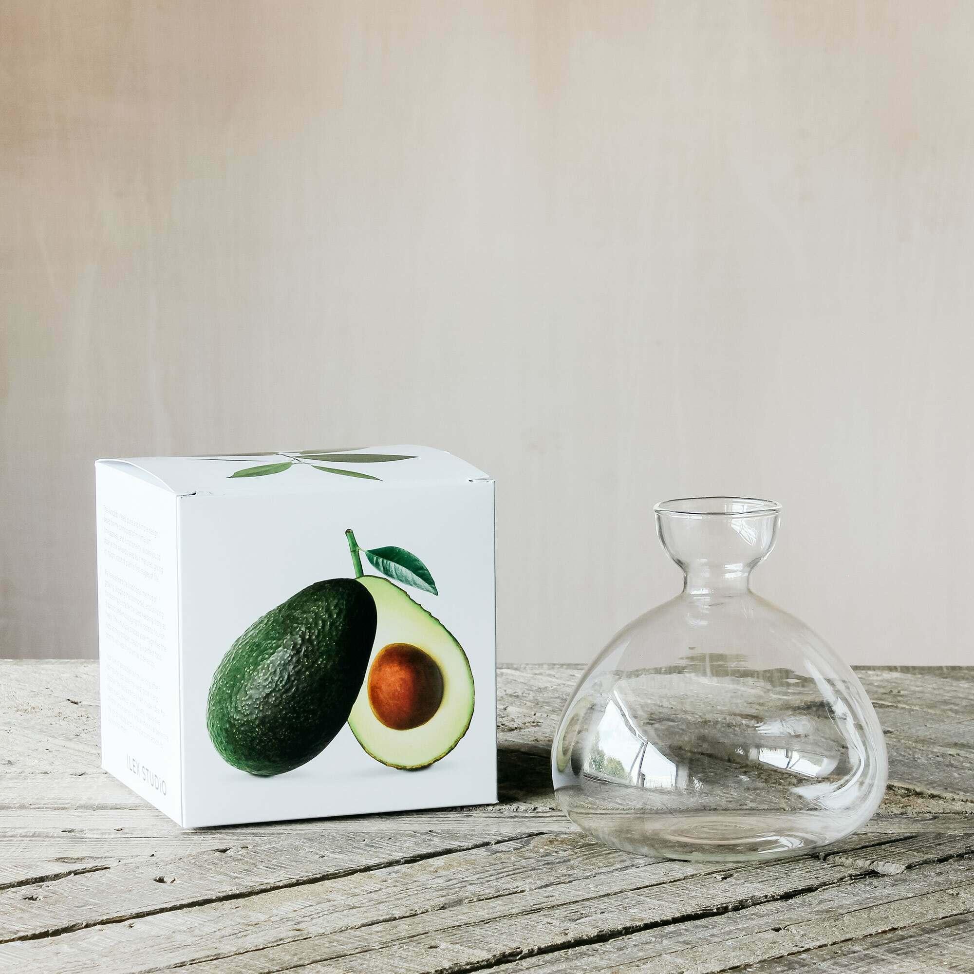 Avocado Vase
