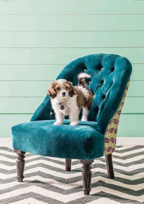 Brielle Anyi Print Chair