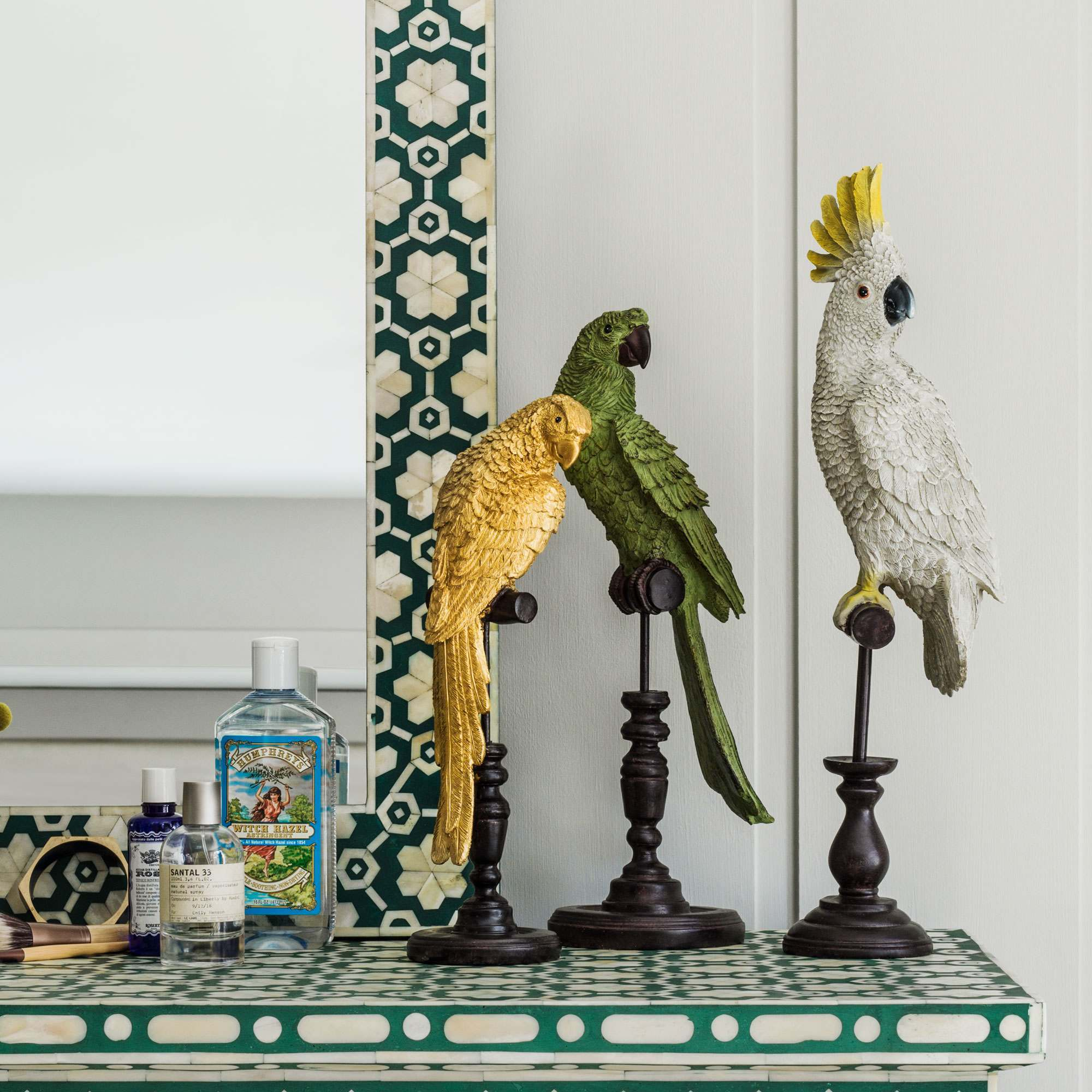 An image of Tropical Birds on Perch