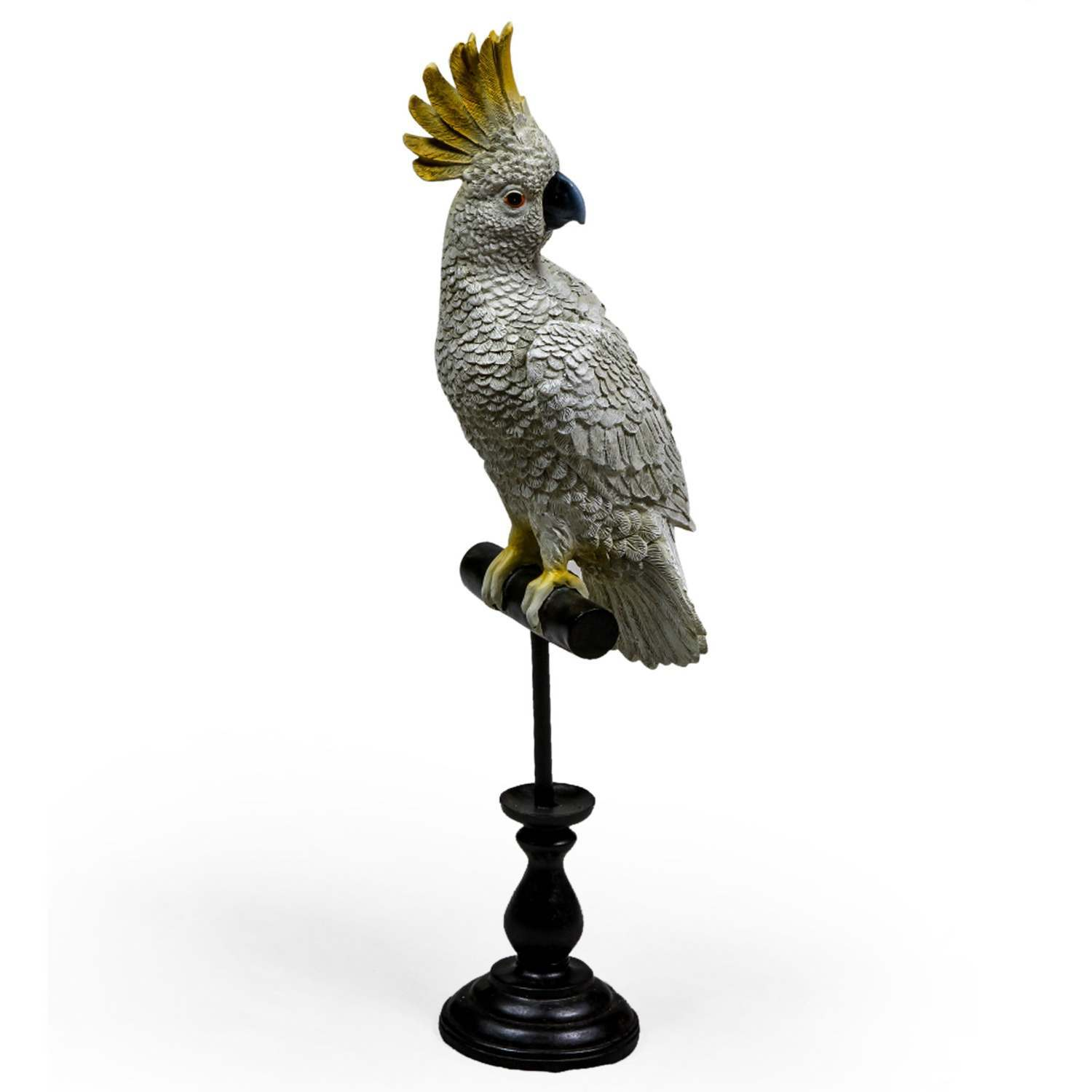 An image of Cockatoo on Perch