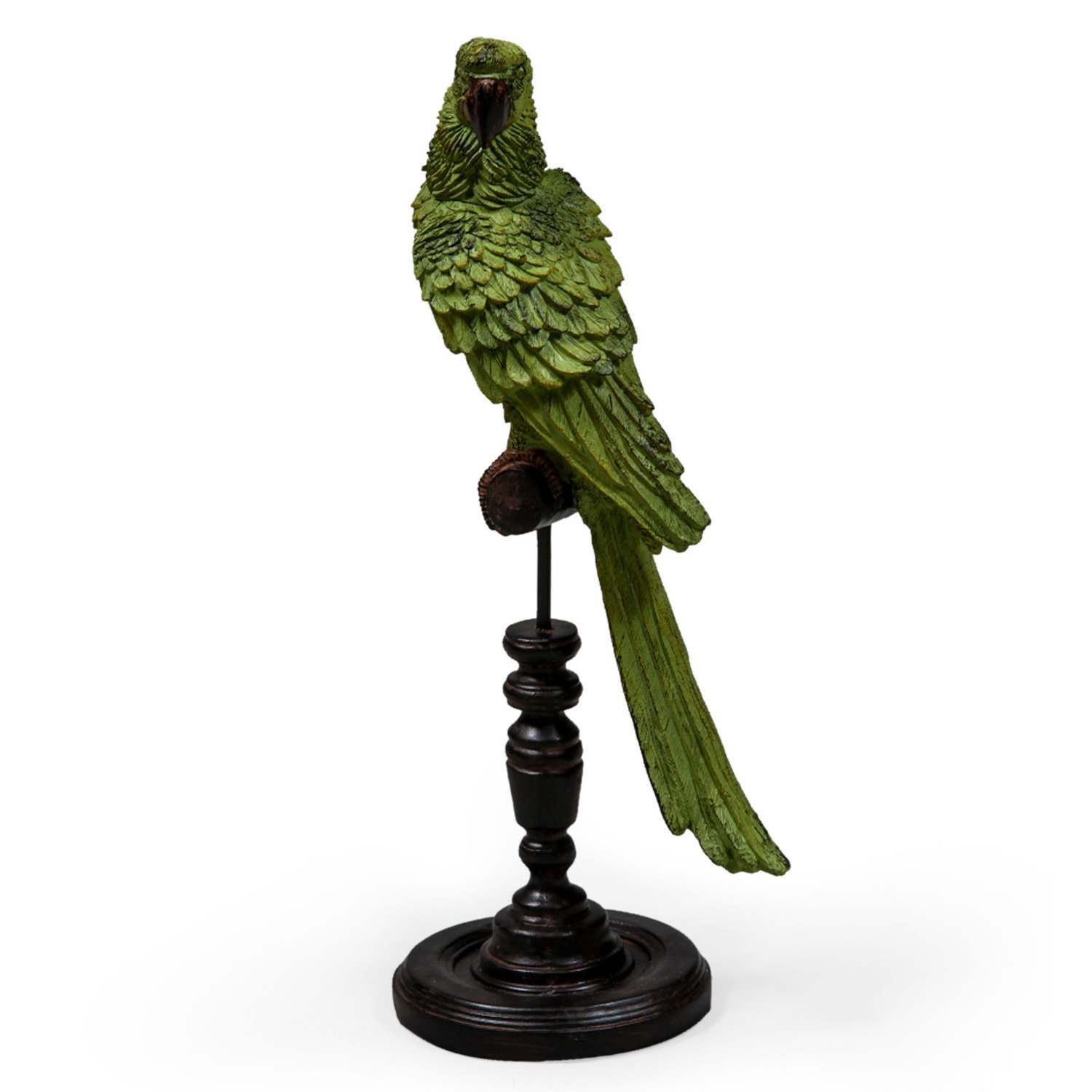 An image of Green Parrot on Perch